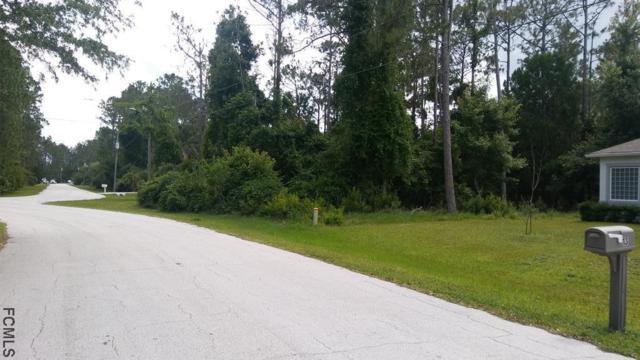 11 Zinnia Trail, Palm Coast, FL 32164 (MLS #238764) :: Pepine Realty