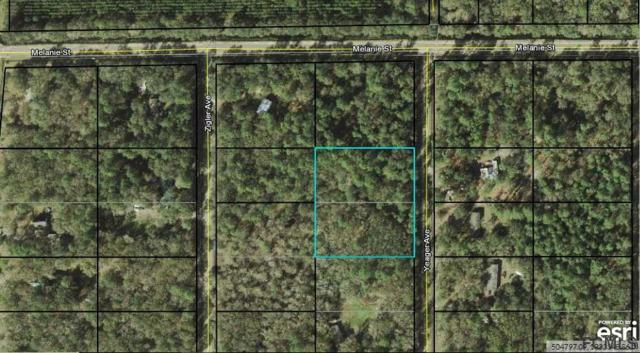 10015 Yeager Ave, Hastings, FL 32145 (MLS #238886) :: Pepine Realty
