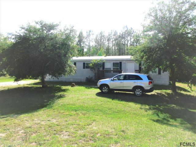 35 Falcon Fire Pl, Bunnell, FL 32110 (MLS #238938) :: RE/MAX Select Professionals