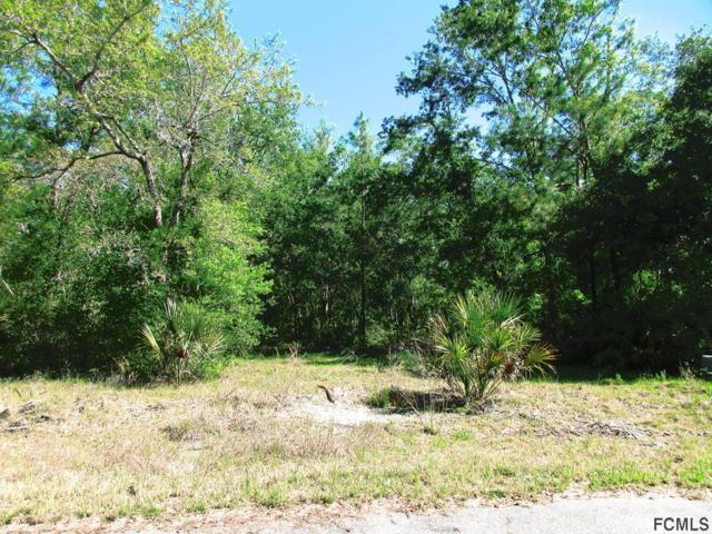 212 Falcon Fire Pl, Bunnell, FL 32110 (MLS #238942) :: Memory Hopkins Real Estate