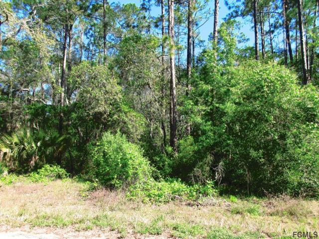 36 Falcon Fire Pl, Bunnell, FL 32110 (MLS #238973) :: Memory Hopkins Real Estate