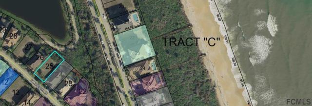 33 Sandpiper Ln, Palm Coast, FL 32137 (MLS #239043) :: RE/MAX Select Professionals