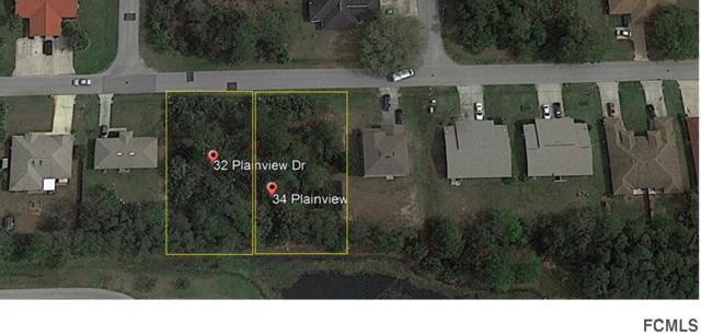 34 Plain View Drive, Palm Coast, FL 32164 (MLS #239176) :: RE/MAX Select Professionals