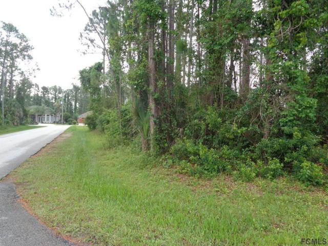 88 Brooklyn Lane, Palm Coast, FL 32137 (MLS #239278) :: RE/MAX Select Professionals
