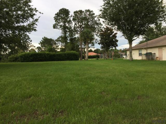 58 Lynbrook Drive, Palm Coast, FL 32137 (MLS #239379) :: RE/MAX Select Professionals