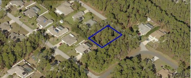 3 Rippling Place, Palm Coast, FL 32164 (MLS #239393) :: RE/MAX Select Professionals