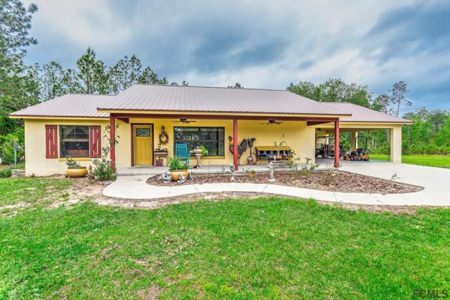 215 Twin Lakes Rd, Bunnell, FL 32110 (MLS #239423) :: RE/MAX Select Professionals