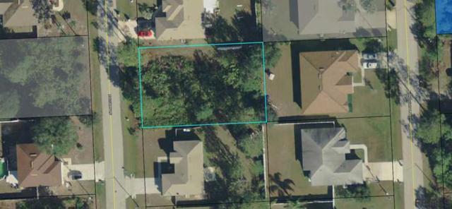 19 Russman Lane, Palm Coast, FL 32164 (MLS #239449) :: RE/MAX Select Professionals