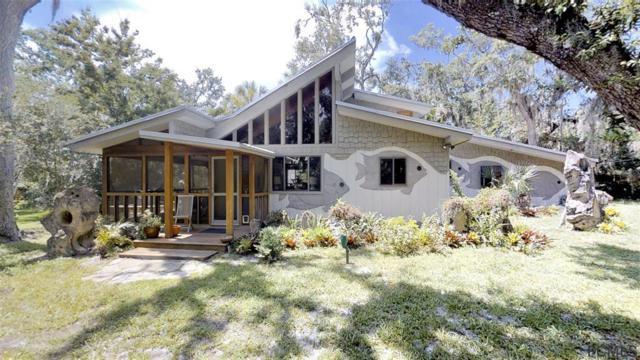 5928 N Ocean Shore Blvd, Palm Coast, FL 32137 (MLS #239670) :: RE/MAX Select Professionals