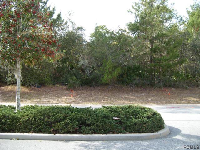 25 Marlin Drive, Palm Coast, FL 32137 (MLS #240271) :: Memory Hopkins Real Estate