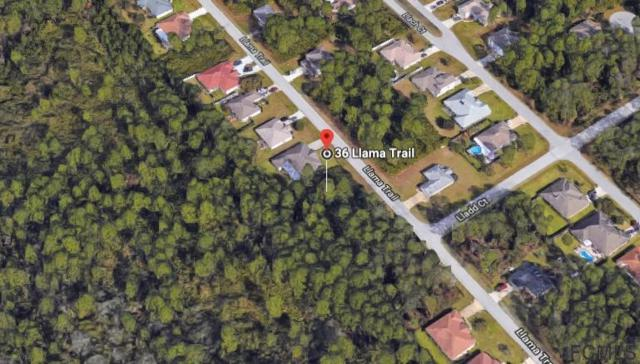 36 Llama Trail, Palm Coast, FL 32164 (MLS #240740) :: Memory Hopkins Real Estate