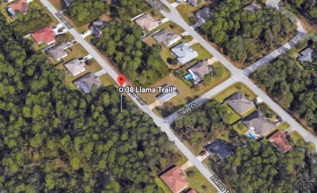 38 Llama Trail, Palm Coast, FL 32164 (MLS #240742) :: Memory Hopkins Real Estate