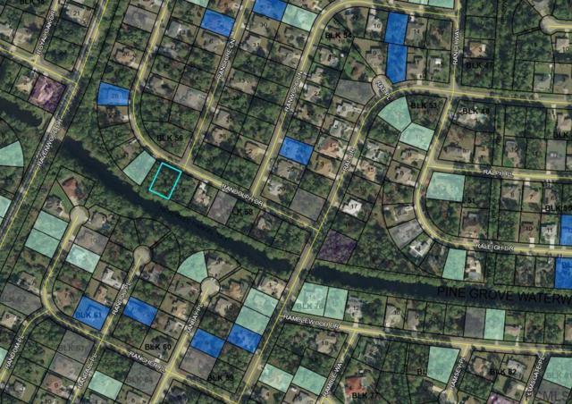 13 Randolph Dr, Palm Coast, FL 32164 (MLS #240770) :: Memory Hopkins Real Estate