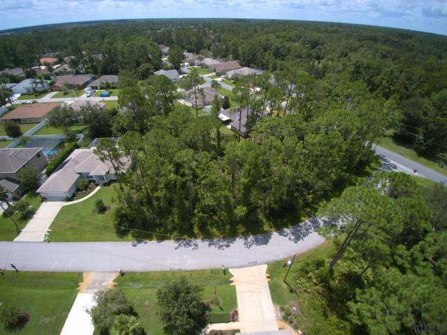 4 Eastmoor Lane, Palm Coast, FL 32164 (MLS #240824) :: Memory Hopkins Real Estate