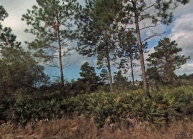 13 Sellner Pl, Palm Coast, FL 32164 (MLS #240828) :: Memory Hopkins Real Estate