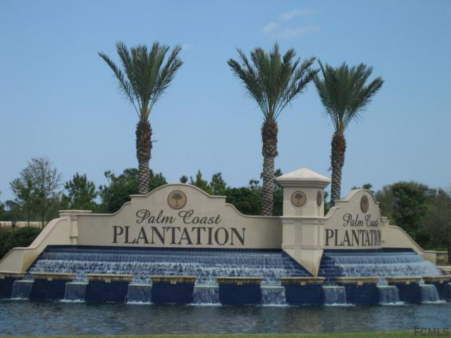 25 Lakewalk Dr N, Palm Coast, FL 32137 (MLS #241636) :: RE/MAX Select Professionals