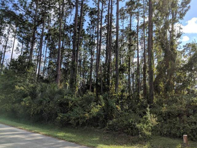 67 Bradmore Lane, Palm Coast, FL 32137 (MLS #241893) :: RE/MAX Select Professionals