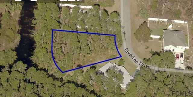 18 Riverina Drive, Palm Coast, FL 32164 (MLS #241896) :: RE/MAX Select Professionals