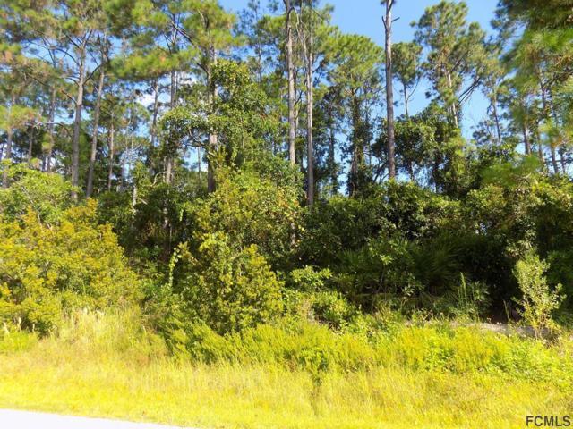 10 Woodfield Drive, Palm Coast, FL 32164 (MLS #241913) :: RE/MAX Select Professionals