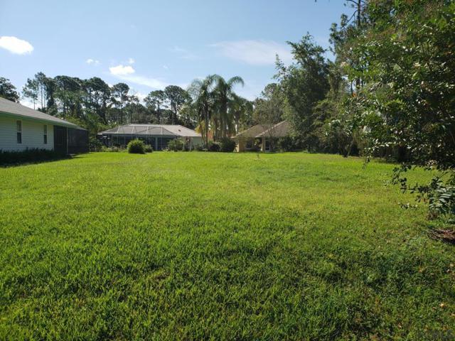 20 Barrister Ln, Palm Coast, FL 32137 (MLS #241977) :: Memory Hopkins Real Estate