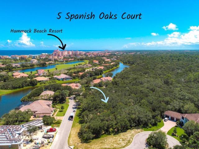 5 Spanish Oaks Ct, Palm Coast, FL 32137 (MLS #241988) :: RE/MAX Select Professionals