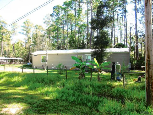 1757 Satinwood St, Bunnell, FL 32110 (MLS #242074) :: RE/MAX Select Professionals