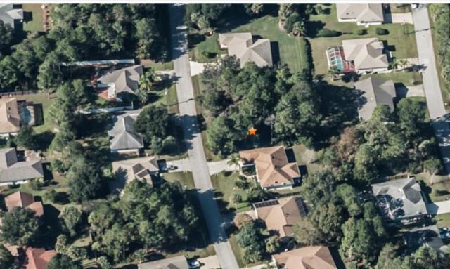 20 Palmer Lane, Palm Coast, FL 32164 (MLS #242402) :: RE/MAX Select Professionals
