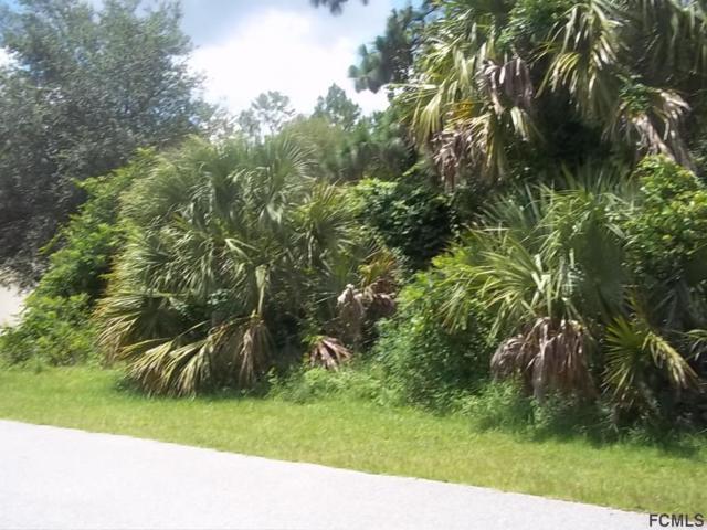17 E Flint Hill Ln, Palm Coast, FL 32137 (MLS #242545) :: RE/MAX Select Professionals