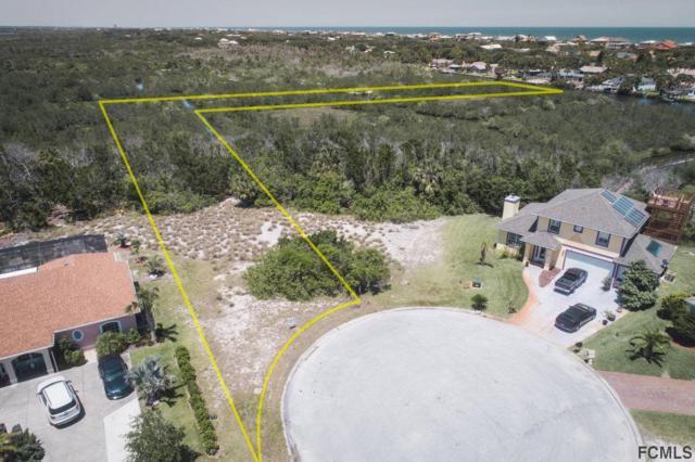 570 Shearwood Drive, Flagler Beach, FL 32136 (MLS #243258) :: Memory Hopkins Real Estate