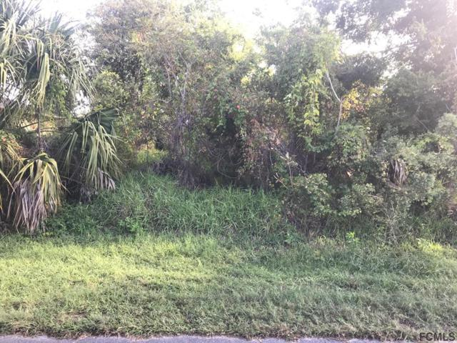 30 Clarendon Ct N, Palm Coast, FL 32137 (MLS #243440) :: RE/MAX Select Professionals