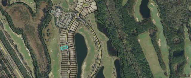 420 Bourganville Drive, Palm Coast, FL 32137 (MLS #243472) :: RE/MAX Select Professionals