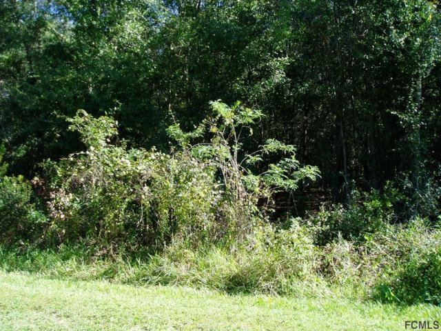 1557 Hickory St, Bunnell, FL 32110 (MLS #243489) :: Memory Hopkins Real Estate