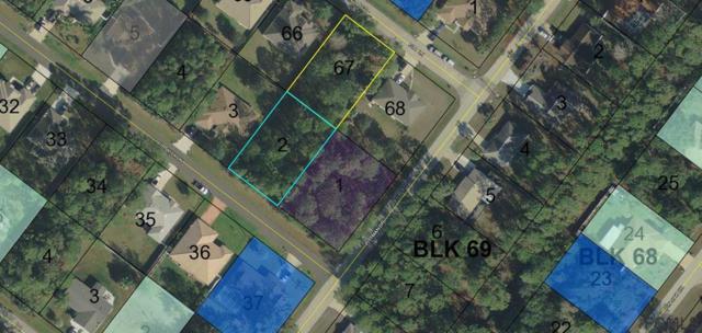 68 Pitt Lane, Palm Coast, FL 32164 (MLS #243585) :: Memory Hopkins Real Estate