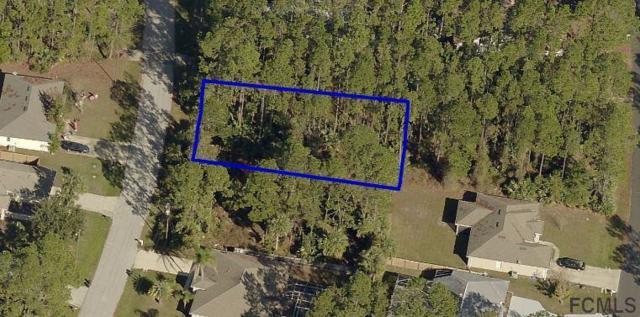 27 Pineland Ln, Palm Coast, FL 32164 (MLS #243641) :: Memory Hopkins Real Estate