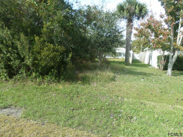 24 Princess Kim Ln, Palm Coast, FL 32164 (MLS #243754) :: Memory Hopkins Real Estate