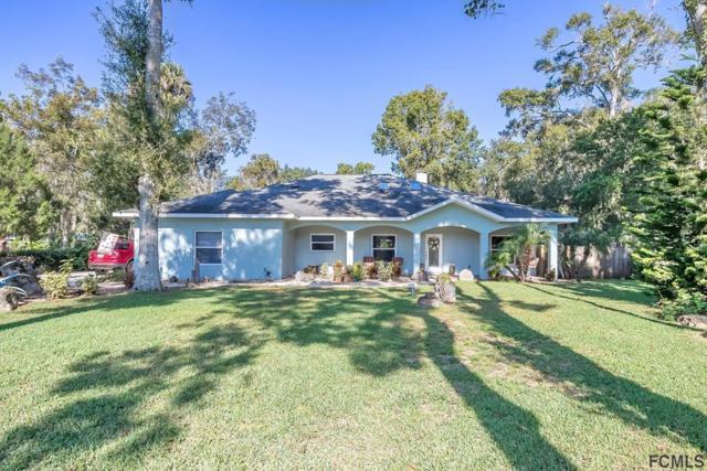919 Samms Avenue, Port Orange, FL 32129 (MLS #243838) :: Memory Hopkins Real Estate