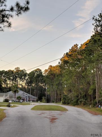 26 Uniontin Court, Palm Coast, FL 32164 (MLS #243911) :: Pepine Realty