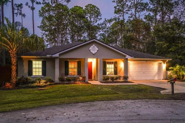 51 Llewellyn Trail, Palm Coast, FL 32164 (MLS #243931) :: Pepine Realty