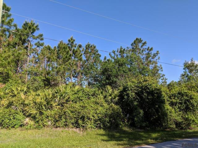 62 Undershire Path, Palm Coast, FL 32164 (MLS #243943) :: Pepine Realty
