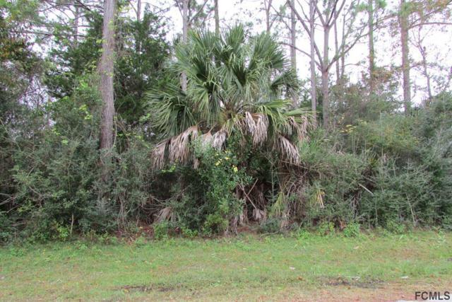 2 Uniondale Place, Palm Coast, FL 32164 (MLS #243956) :: Pepine Realty