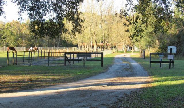 102 North Street, Lake Helen, FL 32744 (MLS #243959) :: Memory Hopkins Real Estate