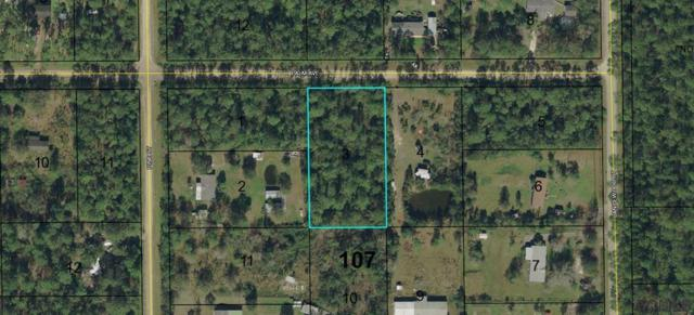 5075 Palm Ave, Bunnell, FL 32110 (MLS #243978) :: Memory Hopkins Real Estate