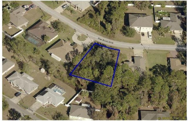 46 Pine Brook Dr, Palm Coast, FL 32164 (MLS #243979) :: Memory Hopkins Real Estate