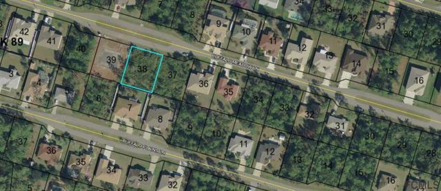 31 Buffalo Meadow Lane, Palm Coast, FL 32137 (MLS #243997) :: Memory Hopkins Real Estate