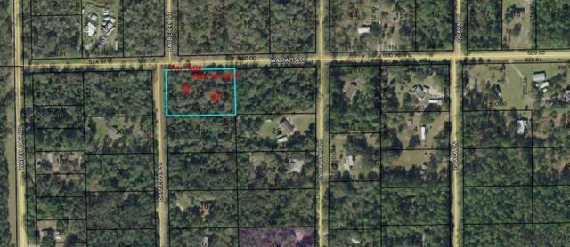 6547 Walnut Avenue, Bunnell, FL 32110 (MLS #244007) :: Memory Hopkins Real Estate
