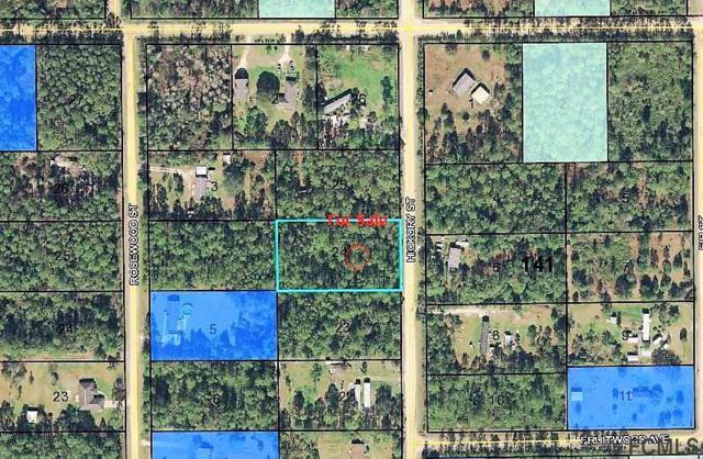 2096 Hickory St, Bunnell, FL 32110 (MLS #244024) :: Memory Hopkins Real Estate