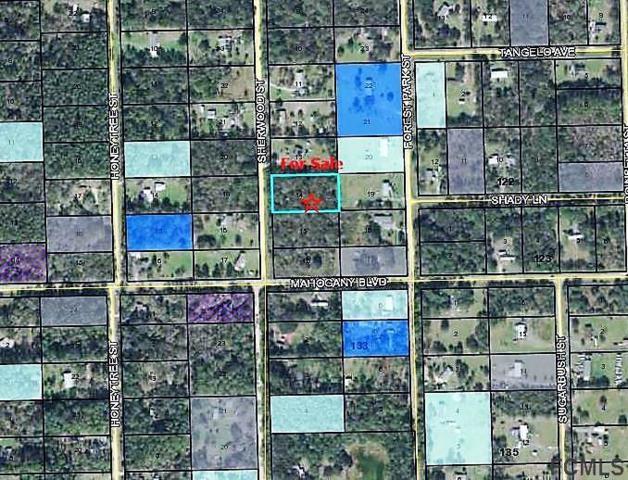 1417 Sherwood Street, Bunnell, FL 32110 (MLS #244039) :: Memory Hopkins Real Estate