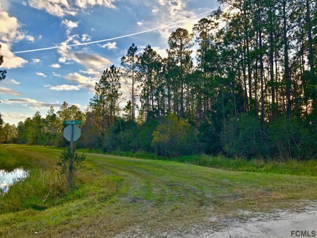 2858 Pineapple St, Bunnell, FL 32110 (MLS #244686) :: RE/MAX Select Professionals