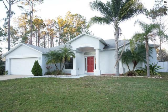 28 Red Birch Lane, Palm Coast, FL 32164 (MLS #244918) :: Memory Hopkins Real Estate