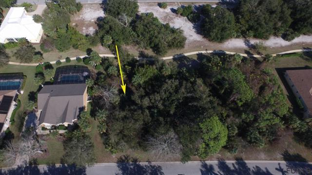 15 S Old Oak Dr, Palm Coast, FL 32137 (MLS #245430) :: RE/MAX Select Professionals